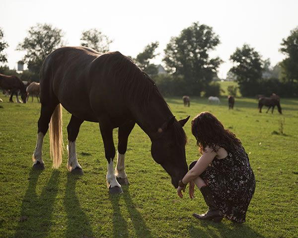 EQUUSOMA - Equine-assisted Trauma Recovery